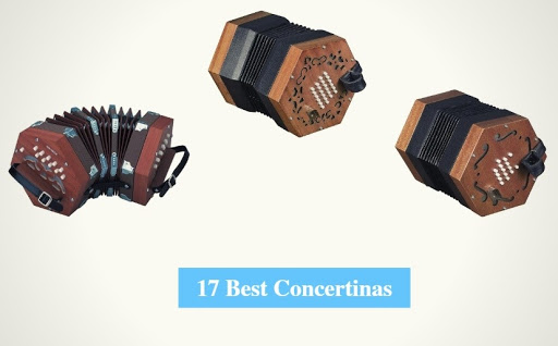 The Features of the New 30-Button Concertina